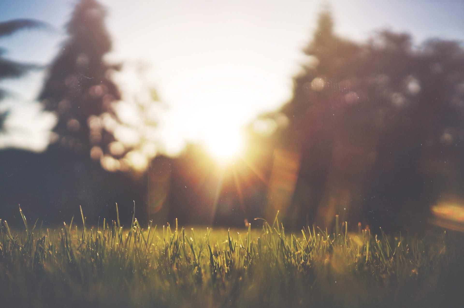 朝日の光が気持よくスッキリ目覚めさせてくれるワケ