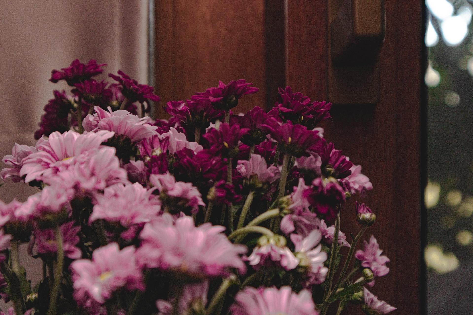 おすすめ「お花のサブスク」のご紹介!