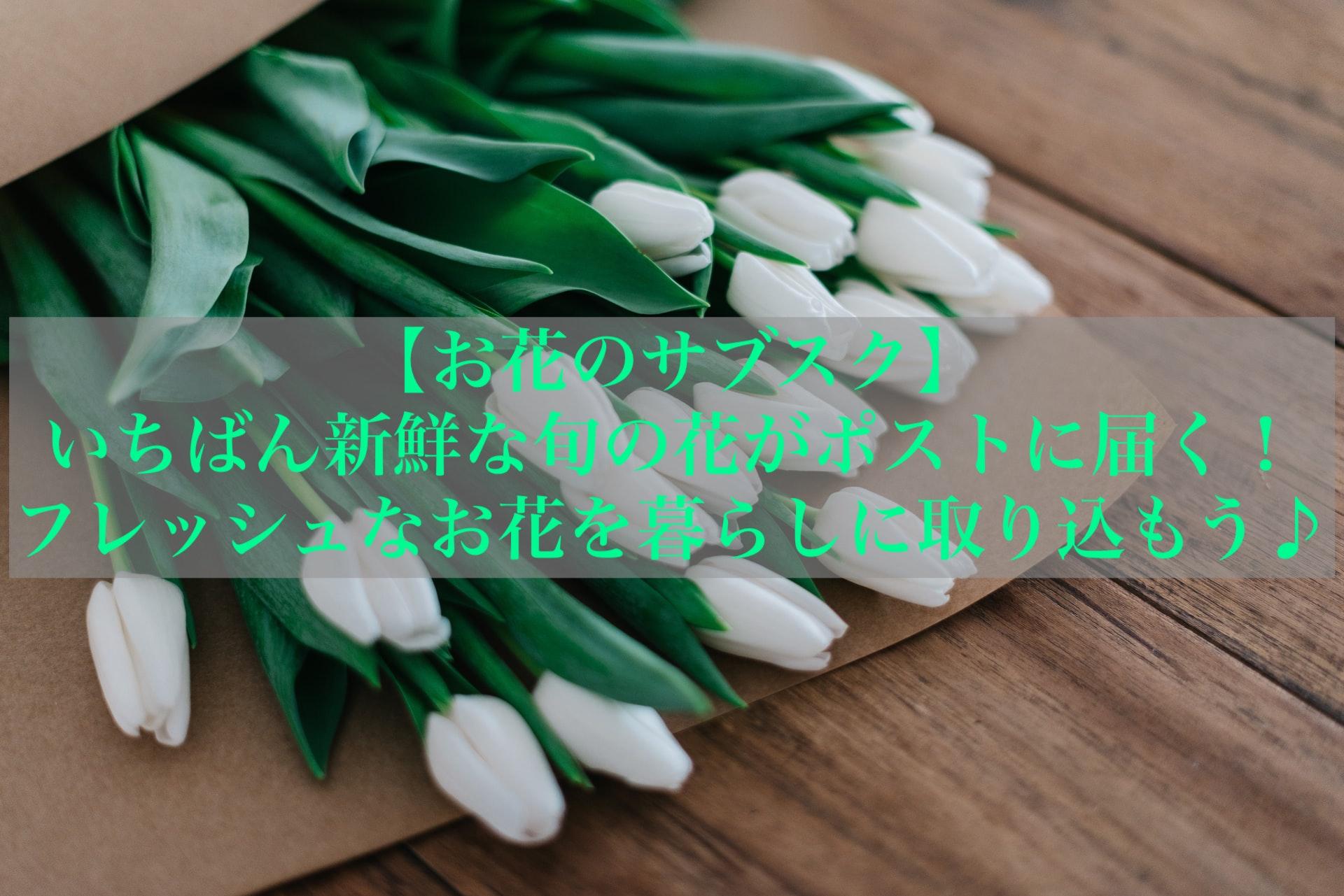 【お花のサブスク】いちばん新鮮な旬の花がポストに届く!フレッシュなお花を暮らしに取り込もう♪